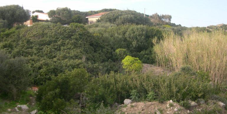 proprietà Laneri Santa Teresa 013